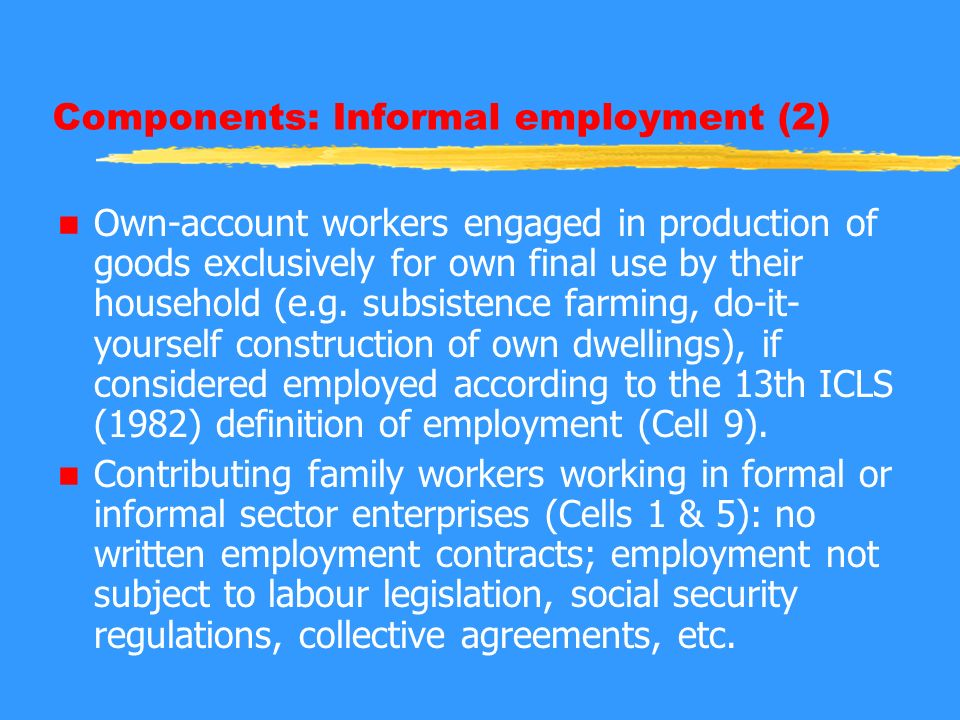 Components: Informal employment (2) n Own-account workers engaged in production of goods exclusively for own final use by their household (e.g.