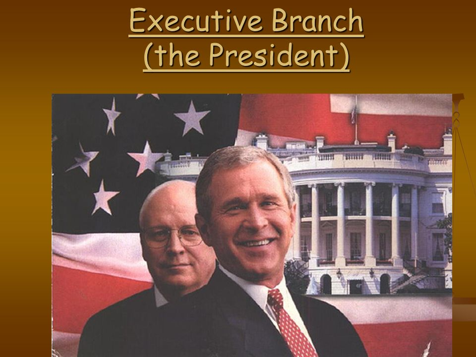 Executive Branch (the President)
