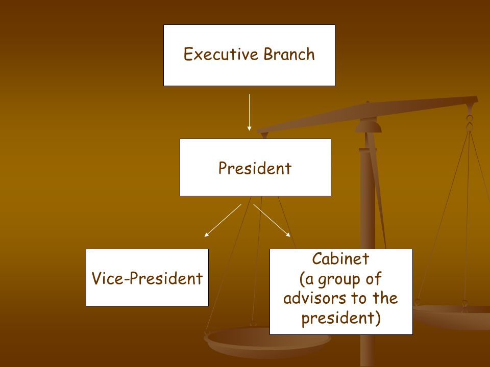 Executive Branch President Vice-President Cabinet (a group of advisors to the president)