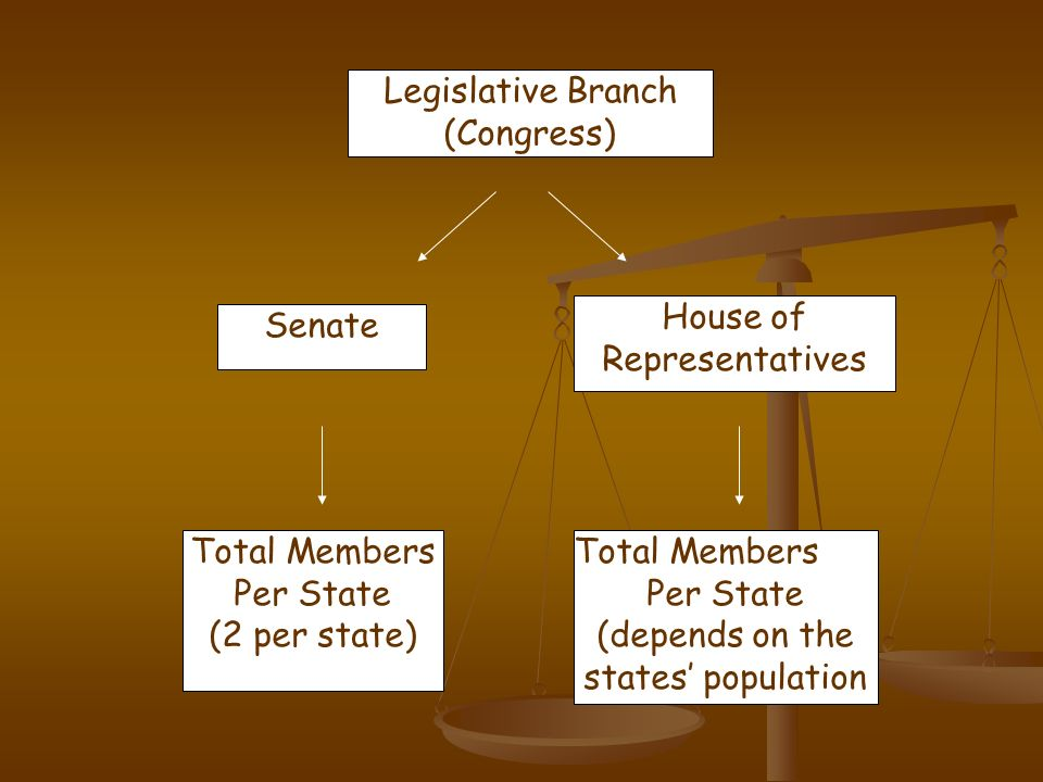 Legislative Branch (Congress) Senate House of Representatives Total Members Per State (2 per state) Total Members Per State (depends on the states pop