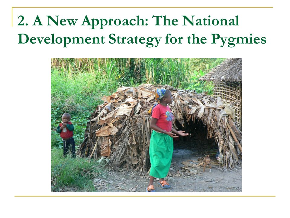 2. A New Approach: The National Development Strategy for the Pygmies