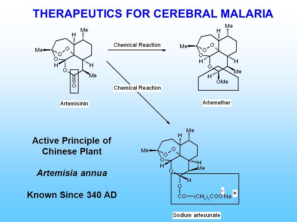 THERAPEUTICS FOR CEREBRAL MALARIA Active Principle of Chinese Plant Artemisia annua Known Since 340 AD