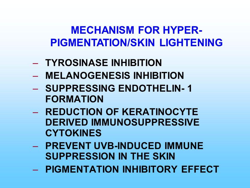 –TYROSINASE INHIBITION –MELANOGENESIS INHIBITION –SUPPRESSING ENDOTHELIN- 1 FORMATION –REDUCTION OF KERATINOCYTE DERIVED IMMUNOSUPPRESSIVE CYTOKINES –
