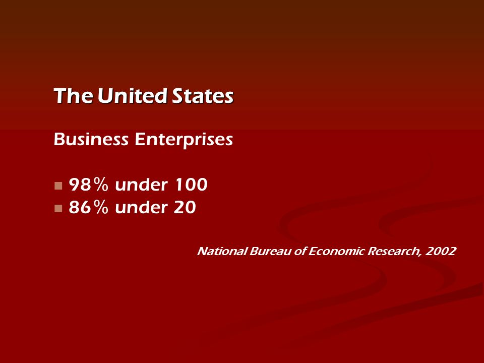 The United States Business Enterprises 98 under under 20 National Bureau of Economic Research, 2002