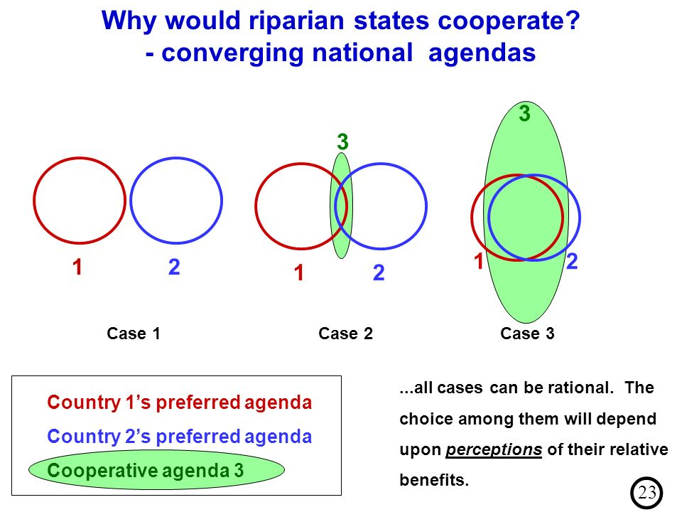 ...all cases can be rational. The choice among them will depend upon perceptions of their relative benefits. 12 Case 1 12 3 Case 2 12 3 Case 3 Country