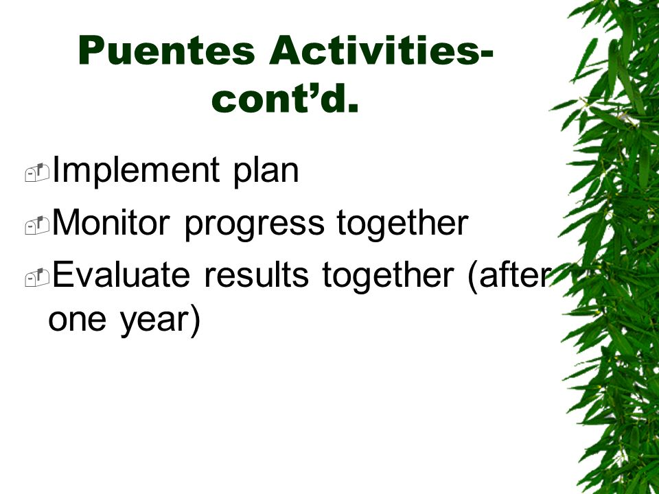 Puentes Activities- contd. Implement plan Monitor progress together Evaluate results together (after one year)