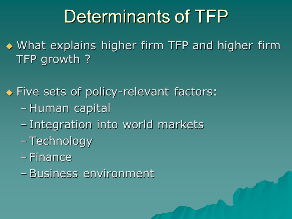 Determinants of TFP What explains higher firm TFP and higher firm TFP growth .
