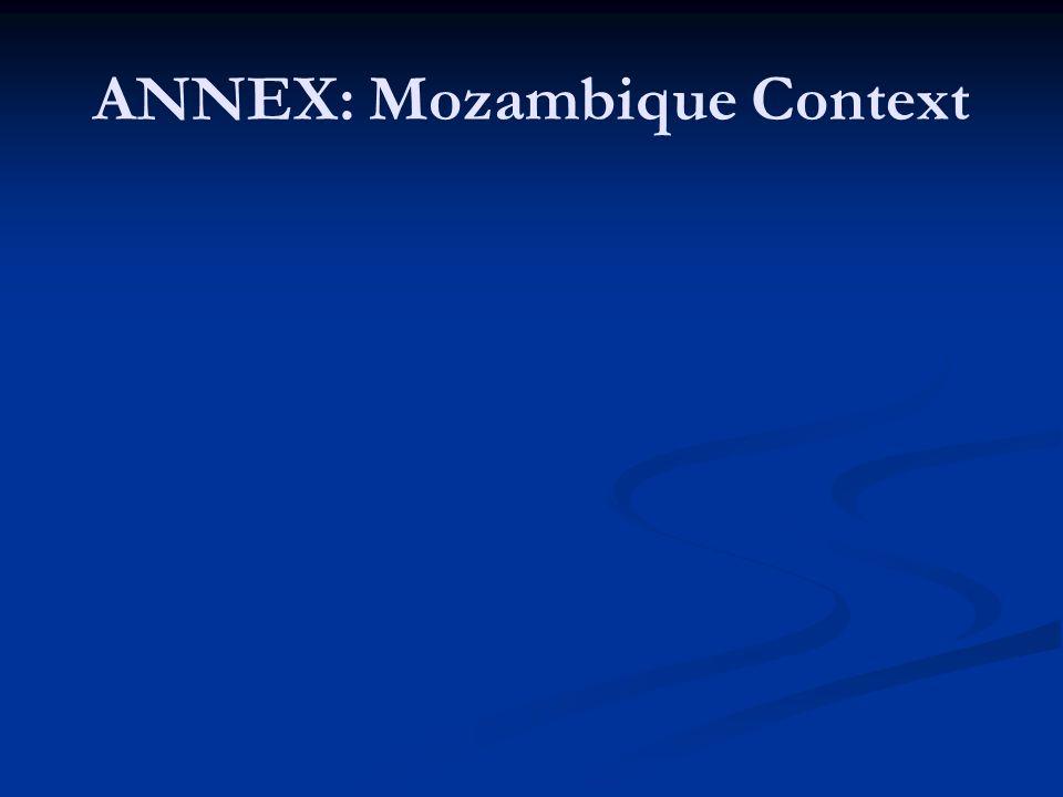 ANNEX: Mozambique Context