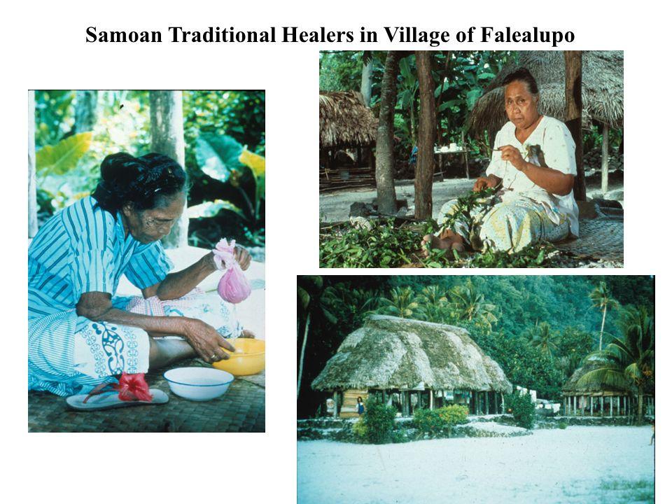 Samoan Traditional Healers in Village of Falealupo