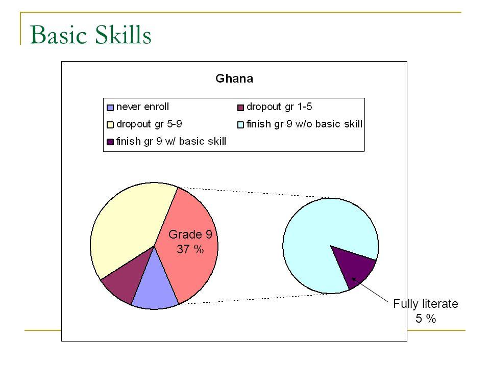 Basic Skills Fully literate 5 % Grade 9 37 %