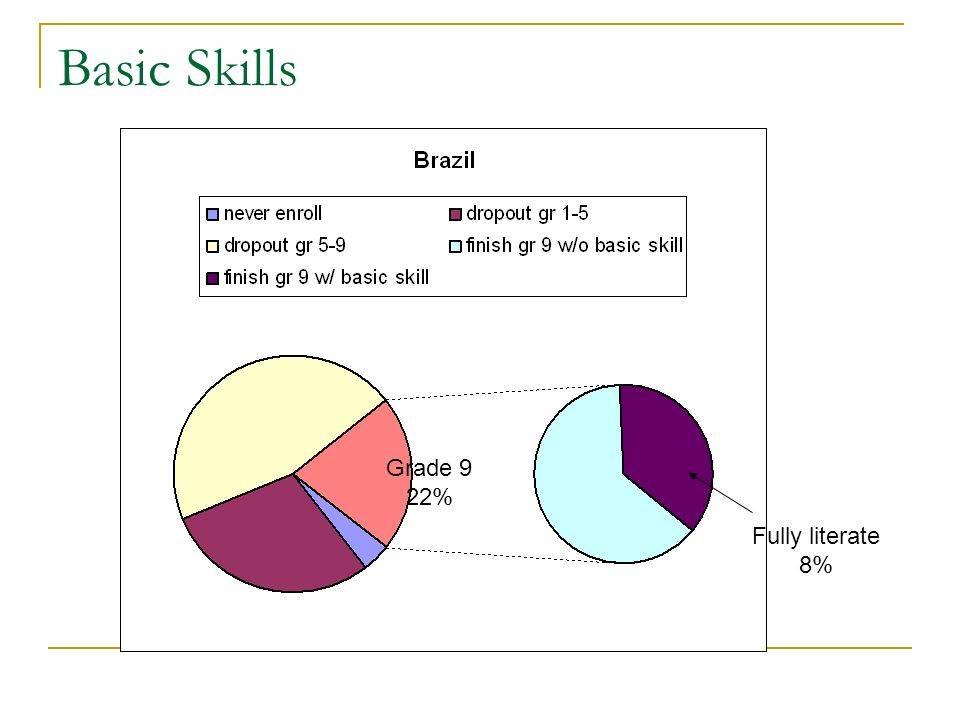 Basic Skills Fully literate 8% Grade 9 22%