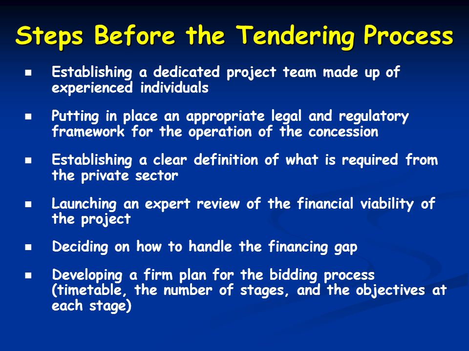 Steps Before the Tendering Process Establishing a dedicated project team made up of experienced individuals Putting in place an appropriate legal and