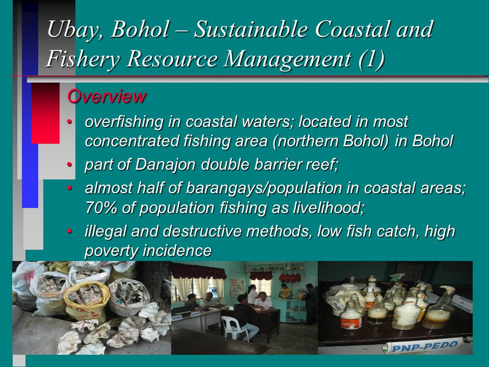12 Ubay, Bohol – Sustainable Coastal and Fishery Resource Management (1) Overview overfishing in coastal waters; located in most concentrated fishing area (northern Bohol) in Boholoverfishing in coastal waters; located in most concentrated fishing area (northern Bohol) in Bohol part of Danajon double barrier reef;part of Danajon double barrier reef; almost half of barangays/population in coastal areas; 70% of population fishing as livelihood;almost half of barangays/population in coastal areas; 70% of population fishing as livelihood; illegal and destructive methods, low fish catch, high poverty incidenceillegal and destructive methods, low fish catch, high poverty incidence