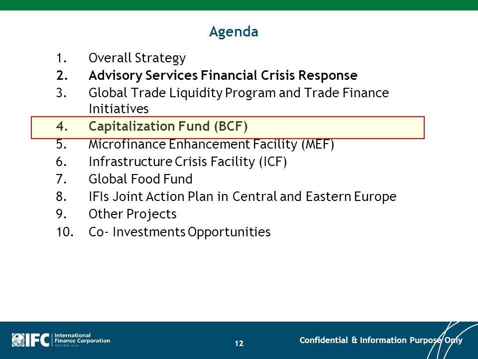 12 Agenda 1.Overall Strategy 2.Advisory Services Financial Crisis Response 3.Global Trade Liquidity Program and Trade Finance Initiatives 4.Capitaliza