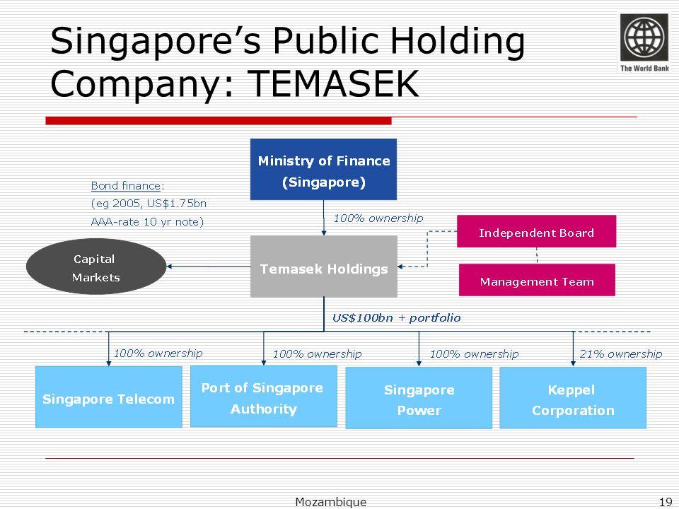 Singapores Public Holding Company: TEMASEK Mozambique19