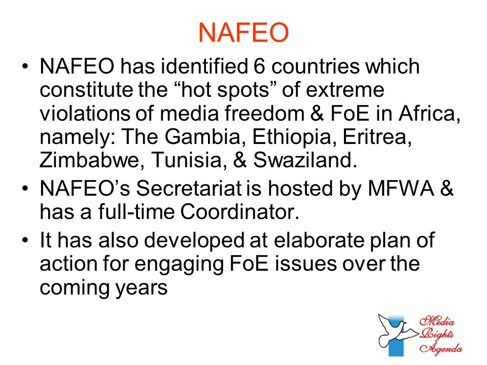 NAFEO NAFEO has identified 6 countries which constitute the hot spots of extreme violations of media freedom & FoE in Africa, namely: The Gambia, Ethiopia, Eritrea, Zimbabwe, Tunisia, & Swaziland.