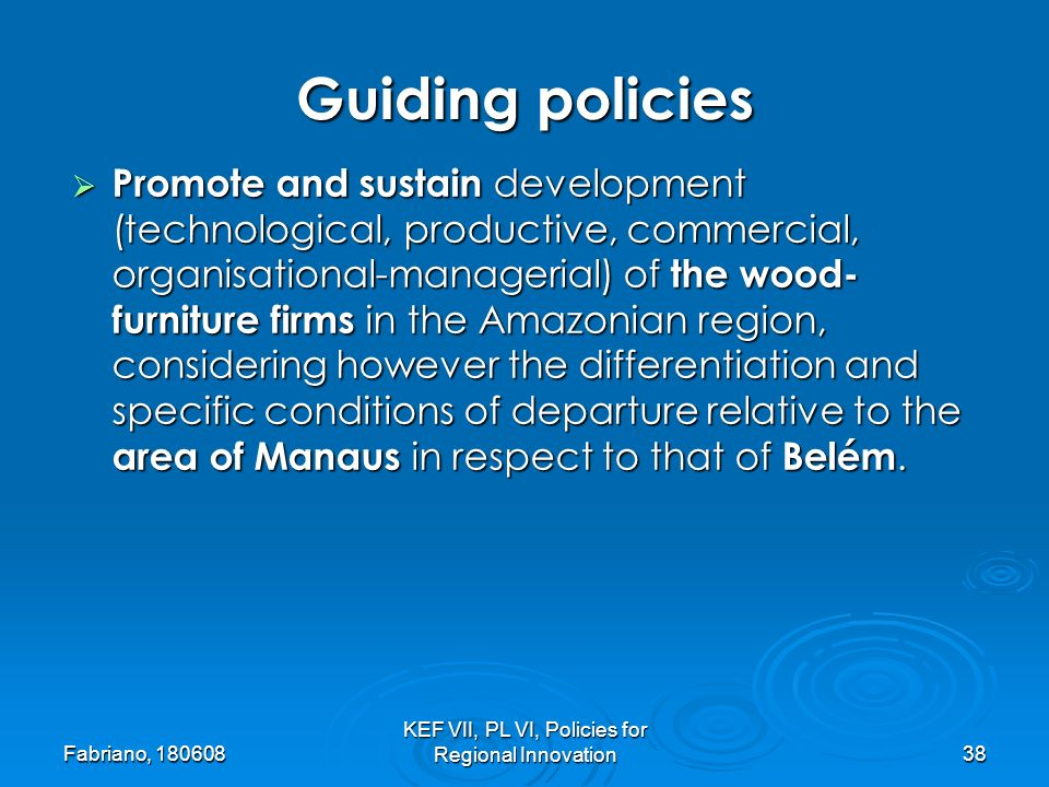 Fabriano, KEF VII, PL VI, Policies for Regional Innovation38 Promote and sustain development (technological, productive, commercial, organisational-managerial) of the wood- furniture firms in the Amazonian region, considering however the differentiation and specific conditions of departure relative to the area of Manaus in respect to that of Belém.