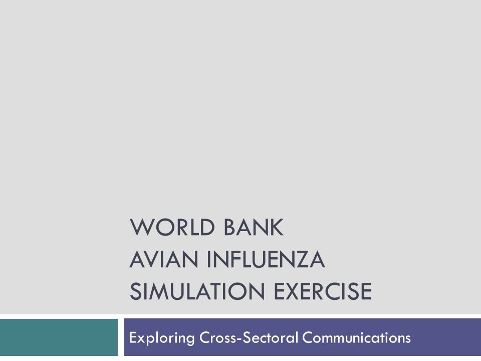 WORLD BANK AVIAN INFLUENZA SIMULATION EXERCISE Exploring Cross-Sectoral Communications