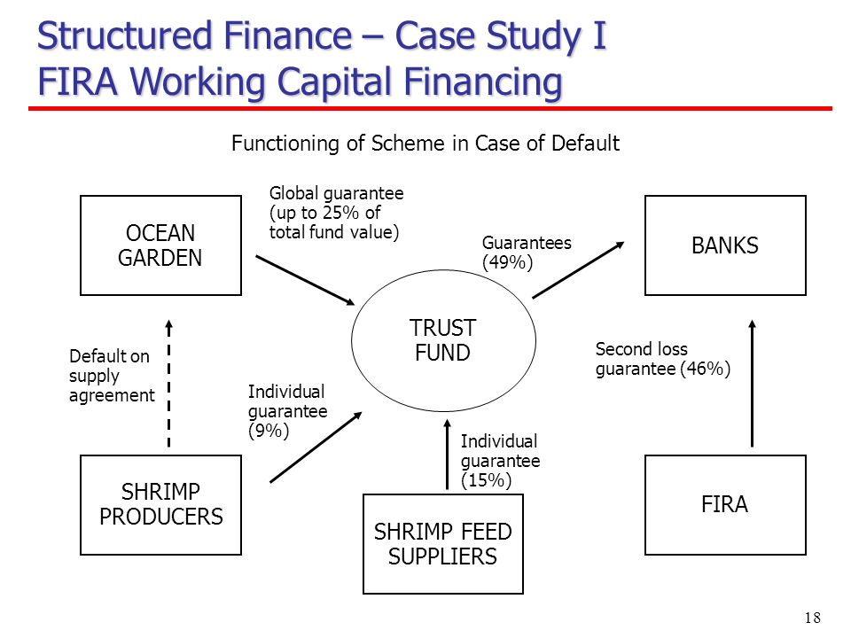 18 OCEAN GARDEN Functioning of Scheme in Case of Default Guarantees (49%) SHRIMP PRODUCERS BANKS FIRA Individual guarantee (9%) Default on supply agreement Global guarantee (up to 25% of total fund value) TRUST FUND SHRIMP FEED SUPPLIERS Individual guarantee (15%) Second loss guarantee (46%) Structured Finance – Case Study I FIRA Working Capital Financing