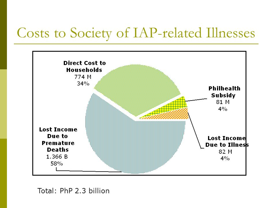 Costs to Society of IAP-related Illnesses Total: PhP 2.3 billion