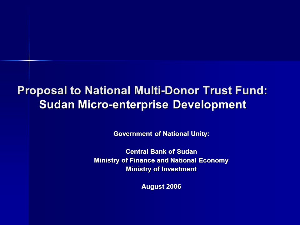 PSD Steering Committee CBOS, Ministry of Finance + all relevant Min/Agencies Bank of Sudan Dr.