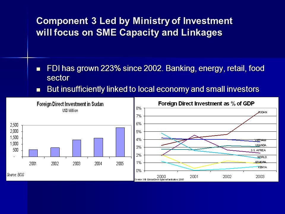 Component 3 Led by Ministry of Investment will focus on SME Capacity and Linkages FDI has grown 223% since 2002.