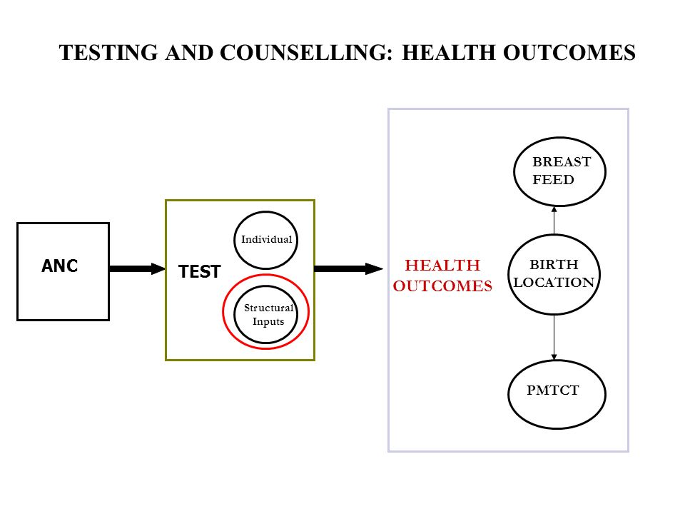ANC TEST Individual Structural Inputs HEALTH OUTCOMES BREAST FEED BIRTH LOCATION PMTCT TESTING AND COUNSELLING: HEALTH OUTCOMES