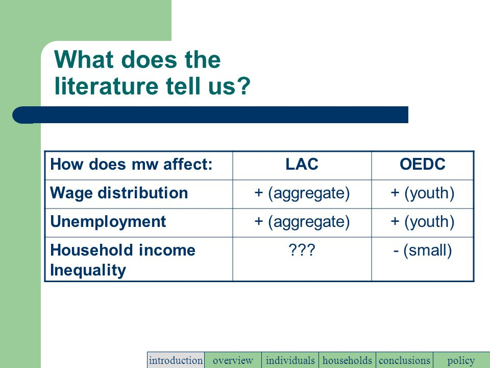 Main questions for the presentation Are minimum wages a free lunch.
