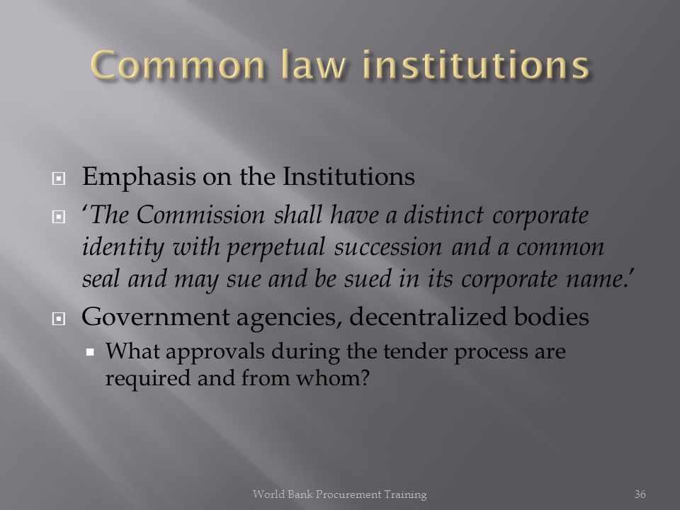 Emphasis on the Institutions The Commission shall have a distinct corporate identity with perpetual succession and a common seal and may sue and be sued in its corporate name.