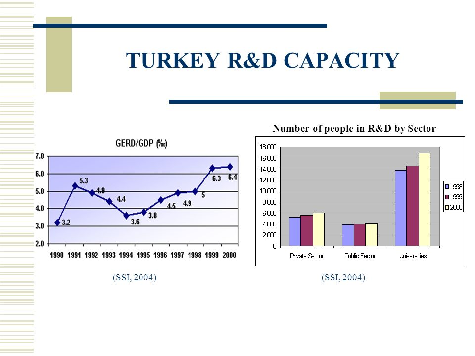 TURKEY R&D CAPACITY (SSI, 2004) Number of people in R&D by Sector (SSI, 2004)