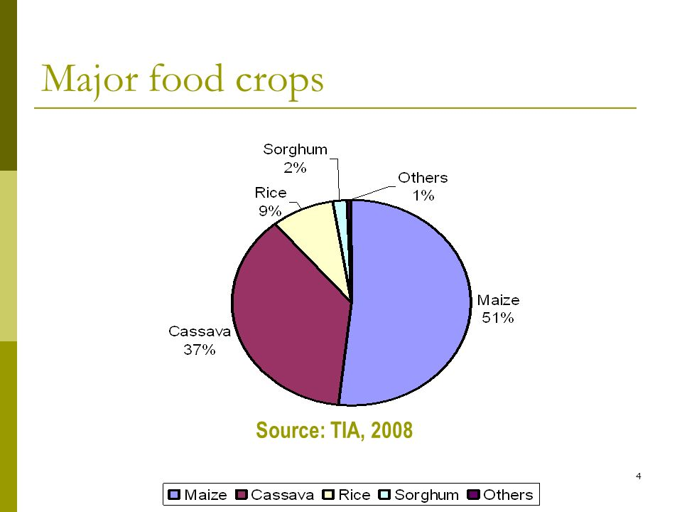 4 Major food crops Source: TIA, 2008