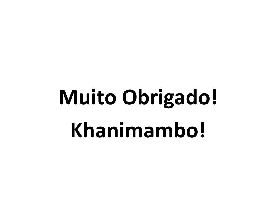 Muito Obrigado! Khanimambo!