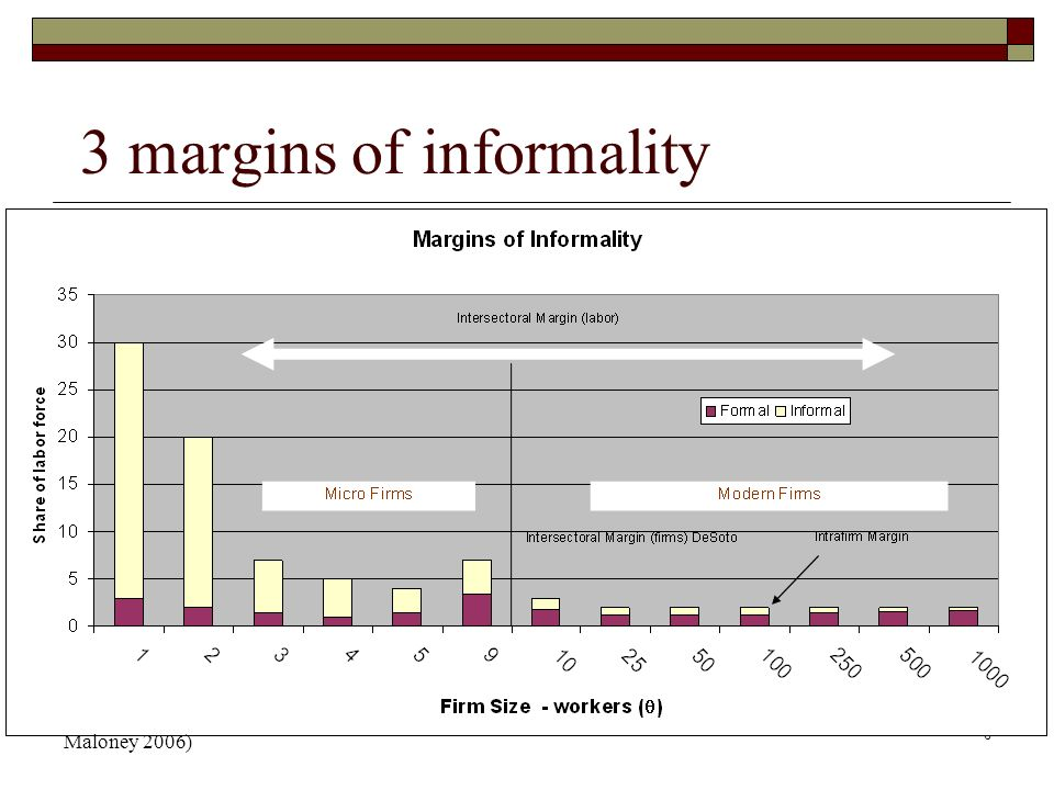 6 3 margins of informality Maloney 2006)