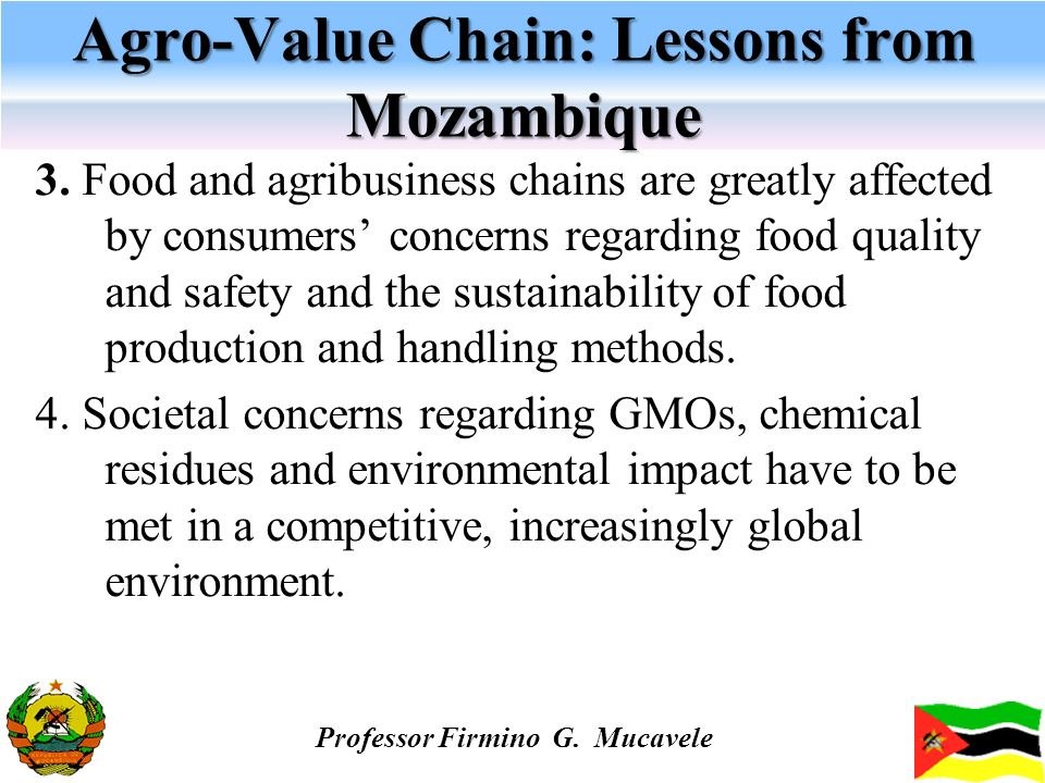 Agro-Value Chain: Lessons from Mozambique 3. Food and agribusiness chains are greatly affected by consumers concerns regarding food quality and safety