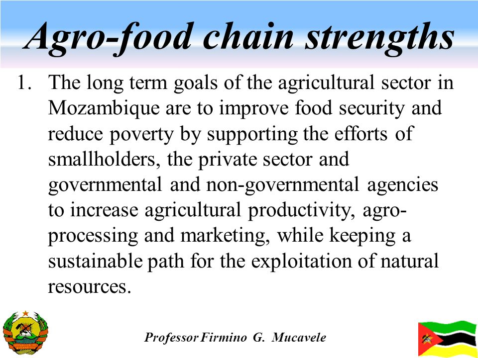Agro-food chain strengths 1.The long term goals of the agricultural sector in Mozambique are to improve food security and reduce poverty by supporting