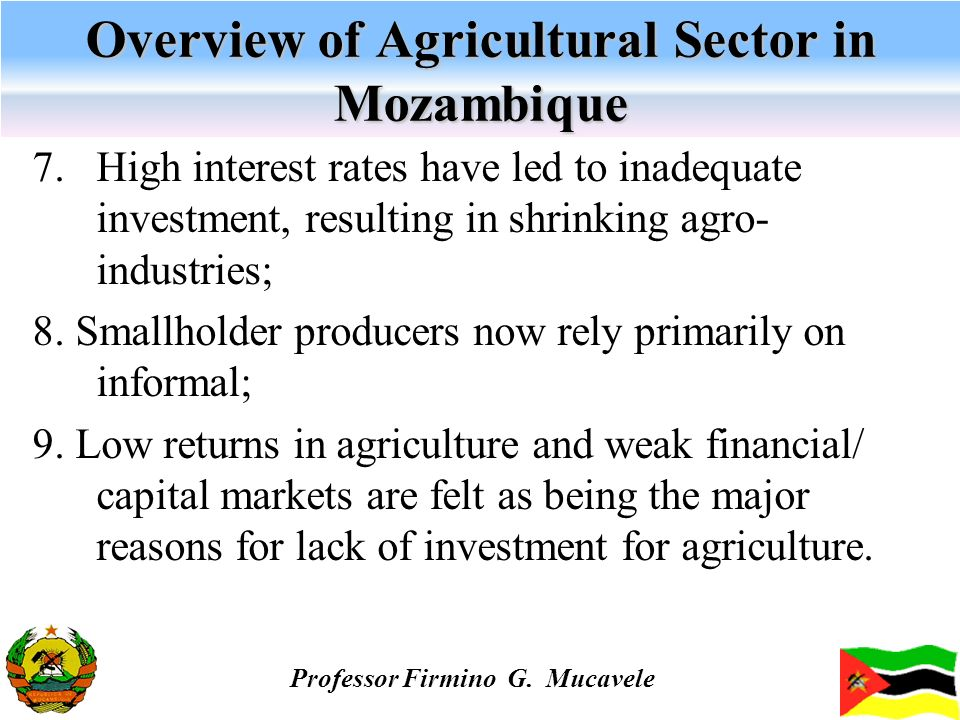 Overview of Agricultural Sector in Mozambique 7. High interest rates have led to inadequate investment, resulting in shrinking agro- industries; 8. Sm