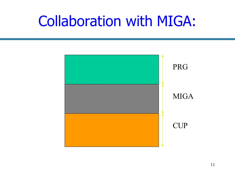 11 Collaboration with MIGA: PRG MIGA CUP