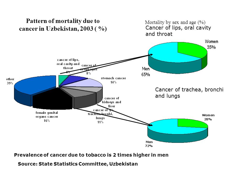 Mortality by sex and age (%) Pattern of mortality due to cancer in Uzbekistan, 2003 ( %) Cancer of lips, oral cavity and throat Cancer of trachea, bro