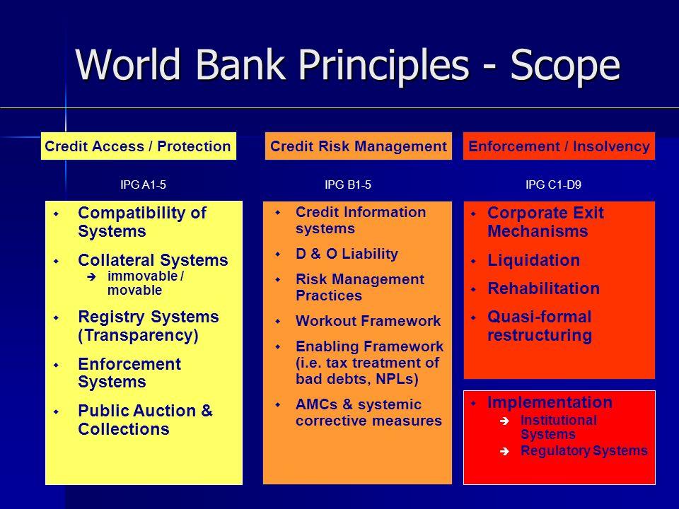 Credit Information systems D & O Liability Risk Management Practices Workout Framework Enabling Framework (i.e.