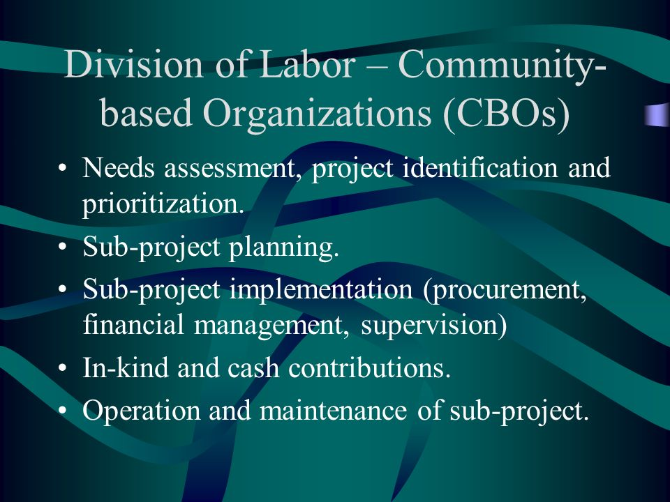 Division of Labor – Community- based Organizations (CBOs) Needs assessment, project identification and prioritization.