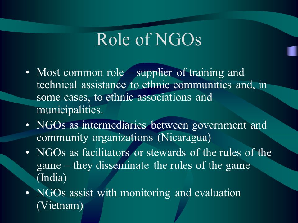 Role of NGOs Most common role – supplier of training and technical assistance to ethnic communities and, in some cases, to ethnic associations and mun