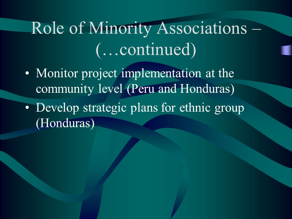 Role of Minority Associations – (…continued) Monitor project implementation at the community level (Peru and Honduras) Develop strategic plans for ethnic group (Honduras)