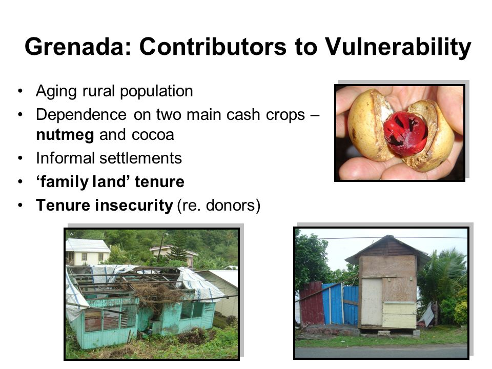 Grenada: Contributors to Vulnerability Aging rural population Dependence on two main cash crops – nutmeg and cocoa Informal settlements family land tenure Tenure insecurity (re.