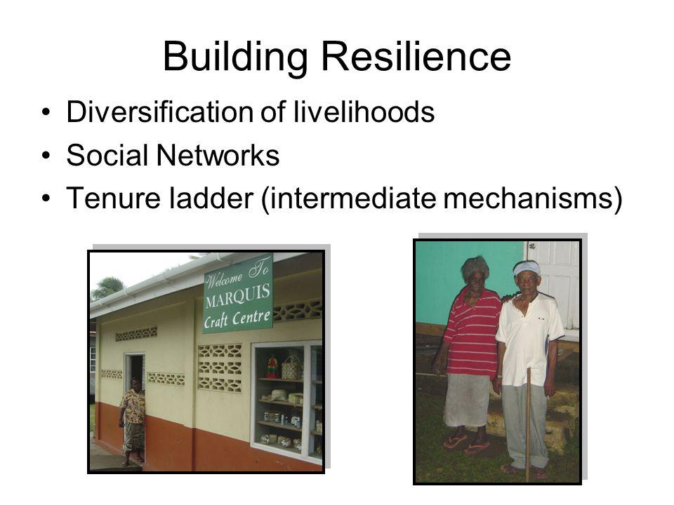 Building Resilience Diversification of livelihoods Social Networks Tenure ladder (intermediate mechanisms)