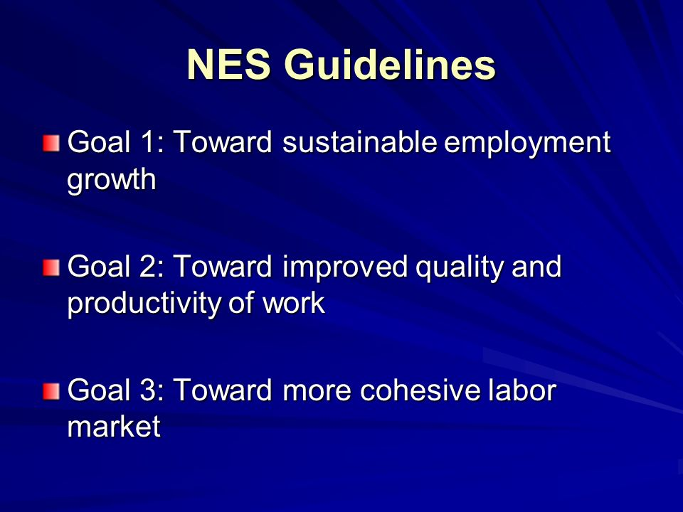 NES Guidelines Goal 1: Toward sustainable employment growth Goal 2: Toward improved quality and productivity of work Goal 3: Toward more cohesive labor market
