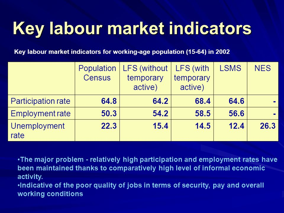 Formal and Informal Employment Formal and Informal Employment Major problem – high level of informal economic activity Active in 2002 or 2003 Formally employed in 2002 and 2003 Informally employed in 2002 or 2003 Total76.229.429.9 By gender Men84.333.234.5 Women68.225.625.3 By educational attainment Low-skilled66.217.135.7 Medium-skilled81.333.528.6 High-skilled87.853.415.7