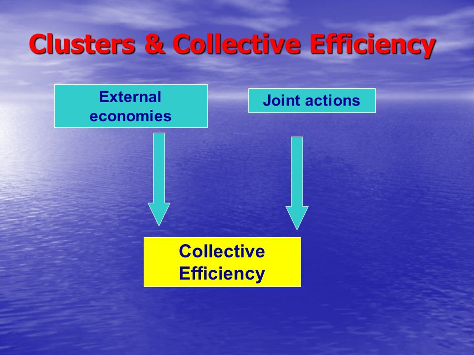 Clusters & Collective Efficiency External economies Joint actions Collective Efficiency