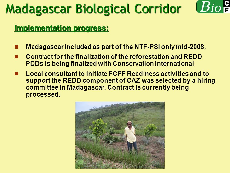 Implementation progress: Madagascar included as part of the NTF-PSI only mid-2008.