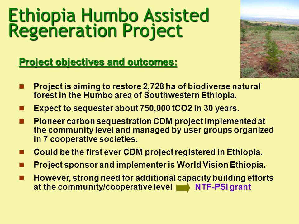 Ethiopia Humbo Assisted Regeneration Project Project objectives and outcomes: Project is aiming to restore 2,728 ha of biodiverse natural forest in the Humbo area of Southwestern Ethiopia.