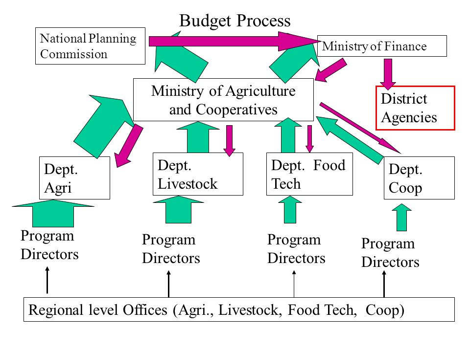 Budget Process Ministry of Agriculture and Cooperatives National Planning Commission Ministry of Finance Dept. Agri Dept. Livestock Dept. Food Tech De